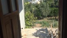 Kozan Gedikli Mahallesinde Satılık Yayla Evi ve Dükkan